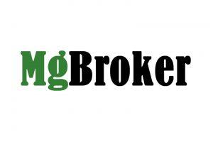 Обзор брокера MgBroker – актуальная информация и честные отзывы