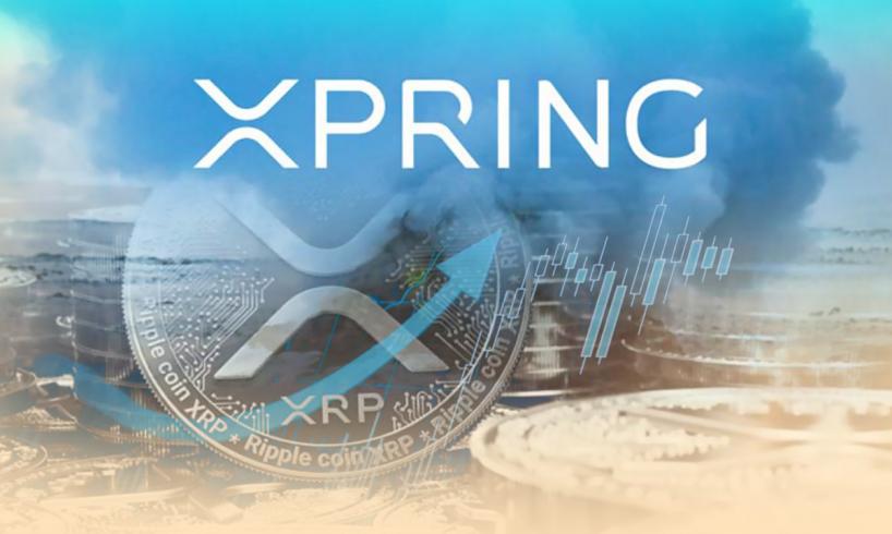 Xpring от Ripple будет способствовать ускорению разработки XRP