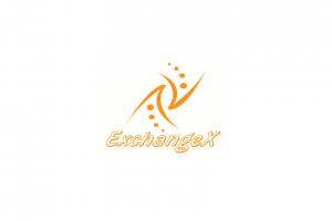 Честный обзор, отзывы об ExchangeX