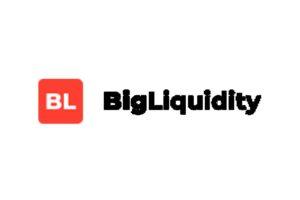 Обзор CFD-брокера Big Liquidity: торговые условия и отзывы трейдеров