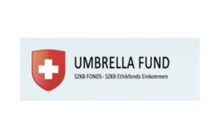 Подробный обзор инвестиционной платформы Umbrella Fund: типы счетов и отзывы клиентов
