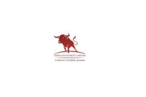 Обзор брокера Think Investments Limited: методы работы и отзывы клиентов