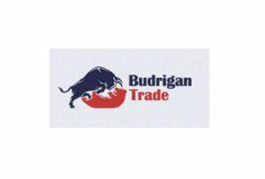 На какую оценку заслуживает Budrigan Trade: независимый обзор и отзывы