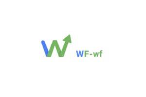 Обзор брокера WF WF: регулирование, условия сотрудничества, отзывы